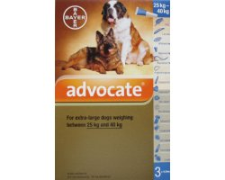 Advocate Extra Large Dog Blue 12 Pack