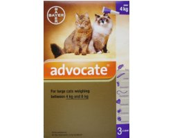 Advocate Large Cat Purple   3 Pack