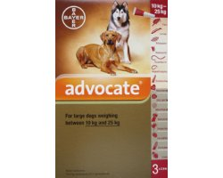 Advocate Large Dog Red   3 Pack