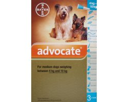 Advocate Medium Dog Teal   3 Pack