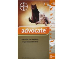 Advocate Small Cat Orange 12 Pack