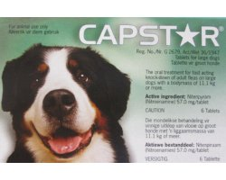 Capstar Large Dog  6 Pack