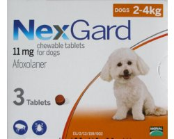Nexgard Small Dog Orange 12 Pack