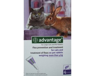 Advantage Large Cat Purple 12 Pack
