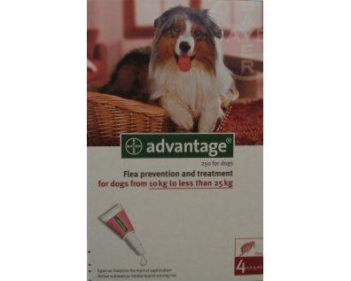 Advantage Large Dog Red 12 Pack